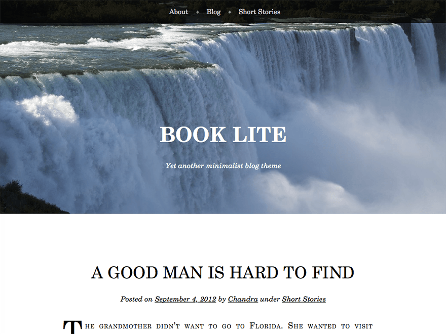 http://wp-themes.com/wp-content/themes/book-lite/screenshot.png