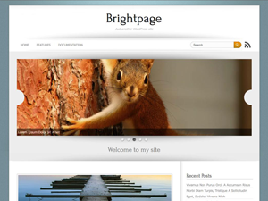 Screenshot Brightpage WordPress Theme