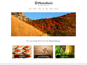 http://wp-themes.com/wp-content/themes/photolistic/screenshot.png