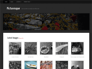 http://wp-themes.com/wp-content/themes/picturesque/screenshot.png