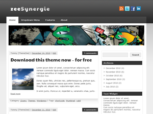 Free zeeSynergie wordpress theme